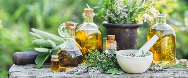 Лікарські рослини в акушерській практиці