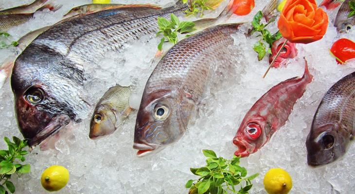 Риба і рибні продукти